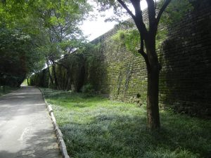 Nanjing Old Fort Wall